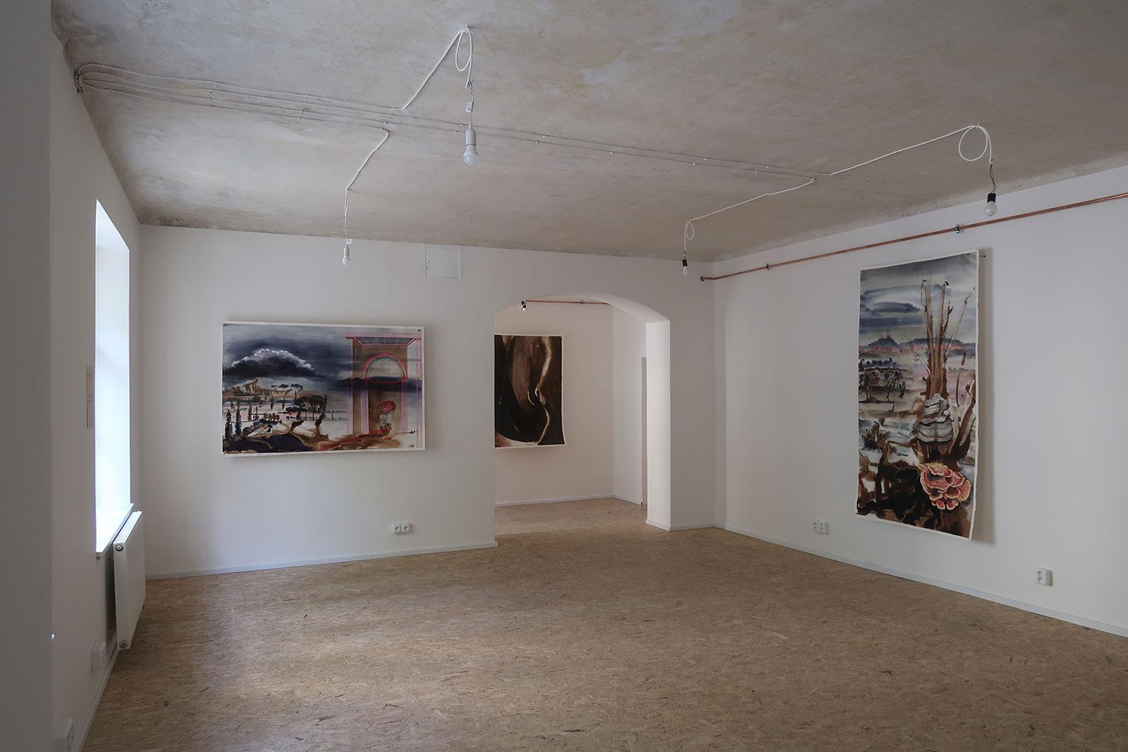 Výstava obrazů Marie Ladrové